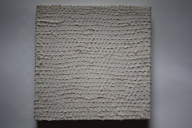 cottonduck2013